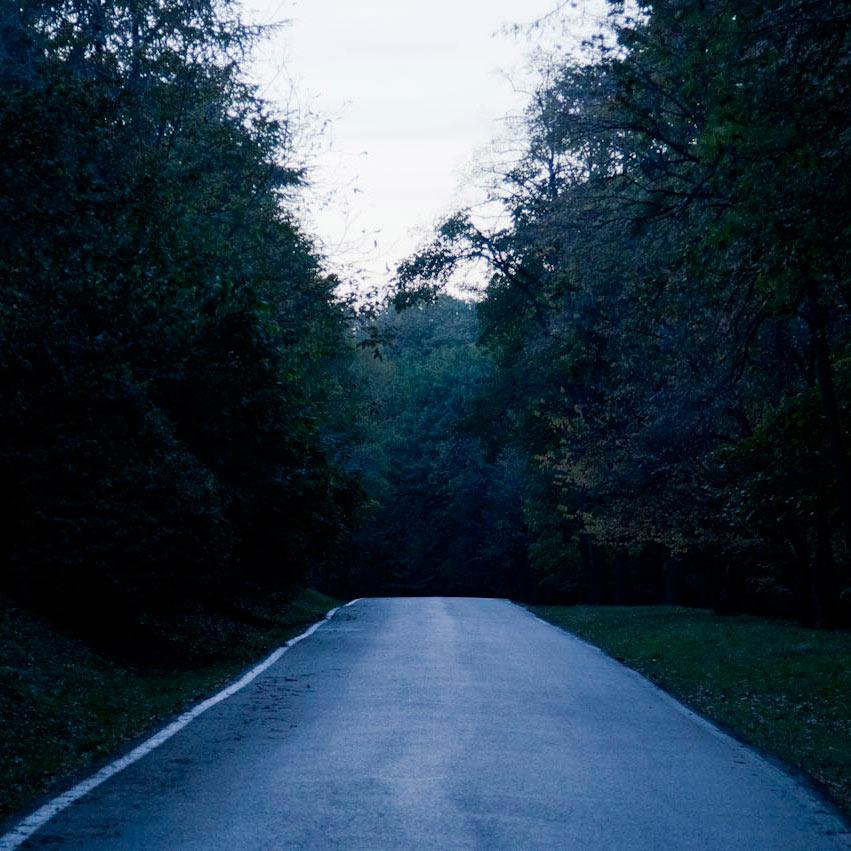 Put u šumu